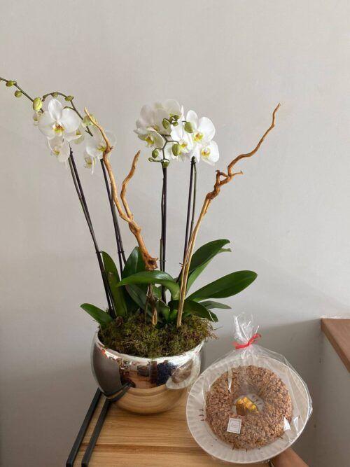 theflowershop-floresadomicilio-floresporsuscripcion-flores_por_membresia_bouquet_flores-2_orquideas_con_enjambre