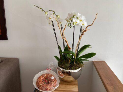 theflowershop-floresadomicilio-floresporsuscripcion-flores_por_membresia_bouquet_flores-2_orquideas_y_churritos
