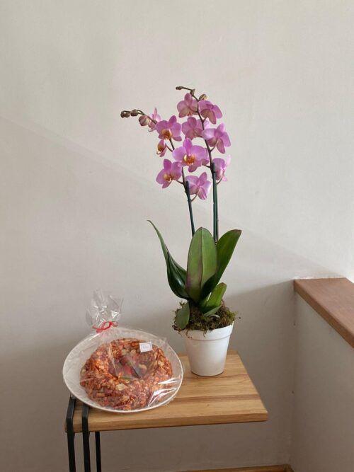 theflowershop-floresadomicilio-floresporsuscripcion-flores_por_membresia_bouquet_flores-orquidea_con_churritos